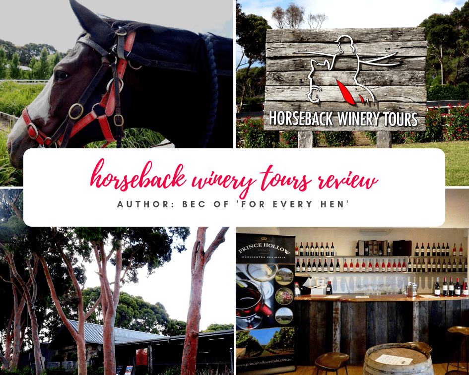 Horseback Winery Tours Review